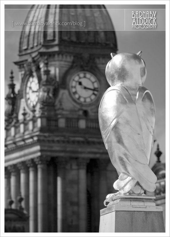 LD02 Owl & LTH 3 (_MG_2788)