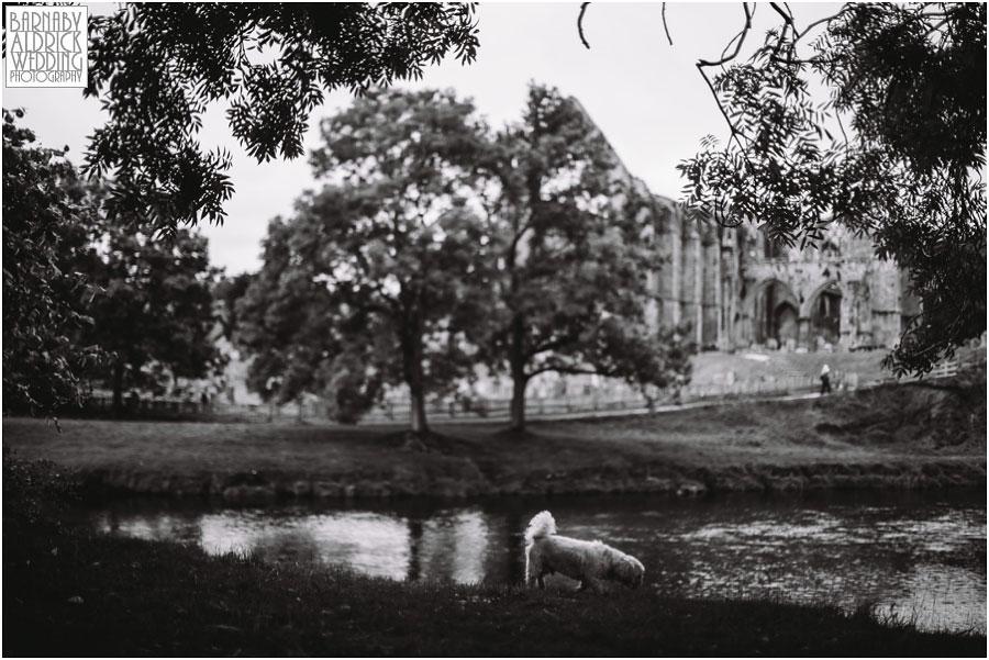Bolton Abbey Pre-Wedding Photography 017.jpg