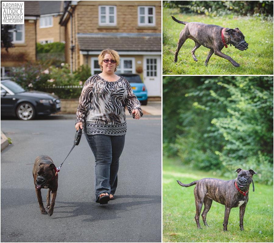 Yorkshire Rose Dog Rescue 004.jpg