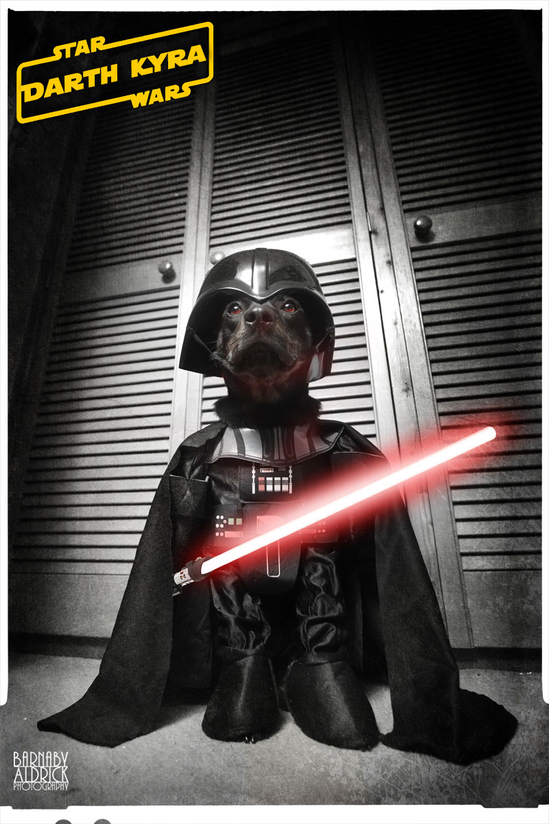 Darth Vader Star Wars Dog Fancy Dress, Star Wars Pet Costume