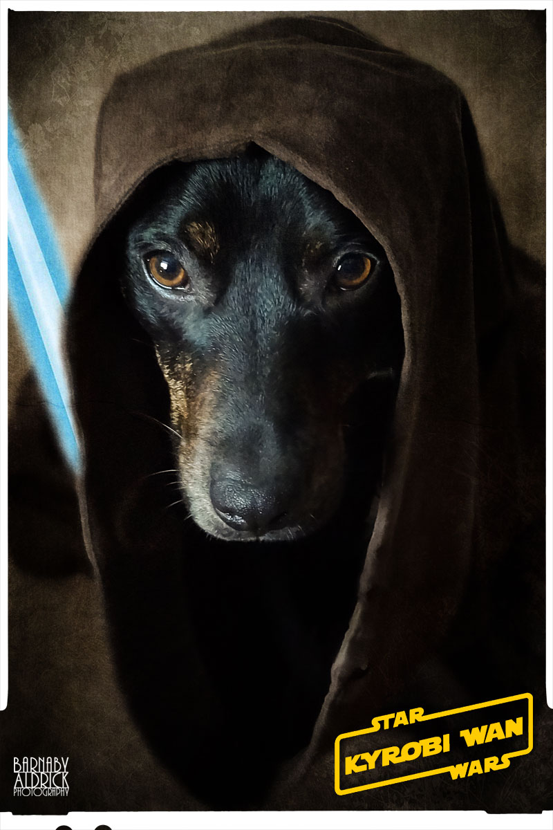 Jedi Star Wars Dog Fancy Dress, Star Wars Pet Costume