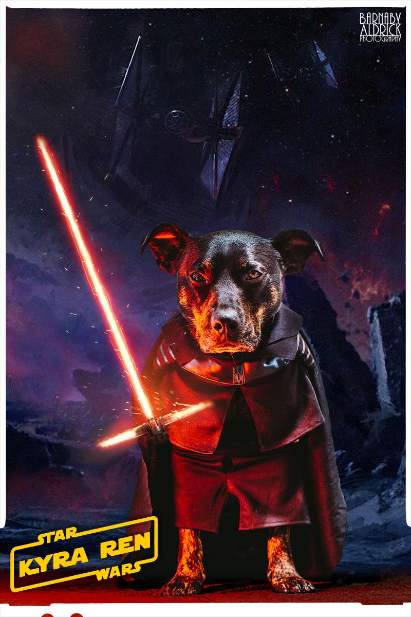 Star Wars Dog costume, Dog lightsaber costume, Star Wars Pet outfit, Kylo Ren Dog
