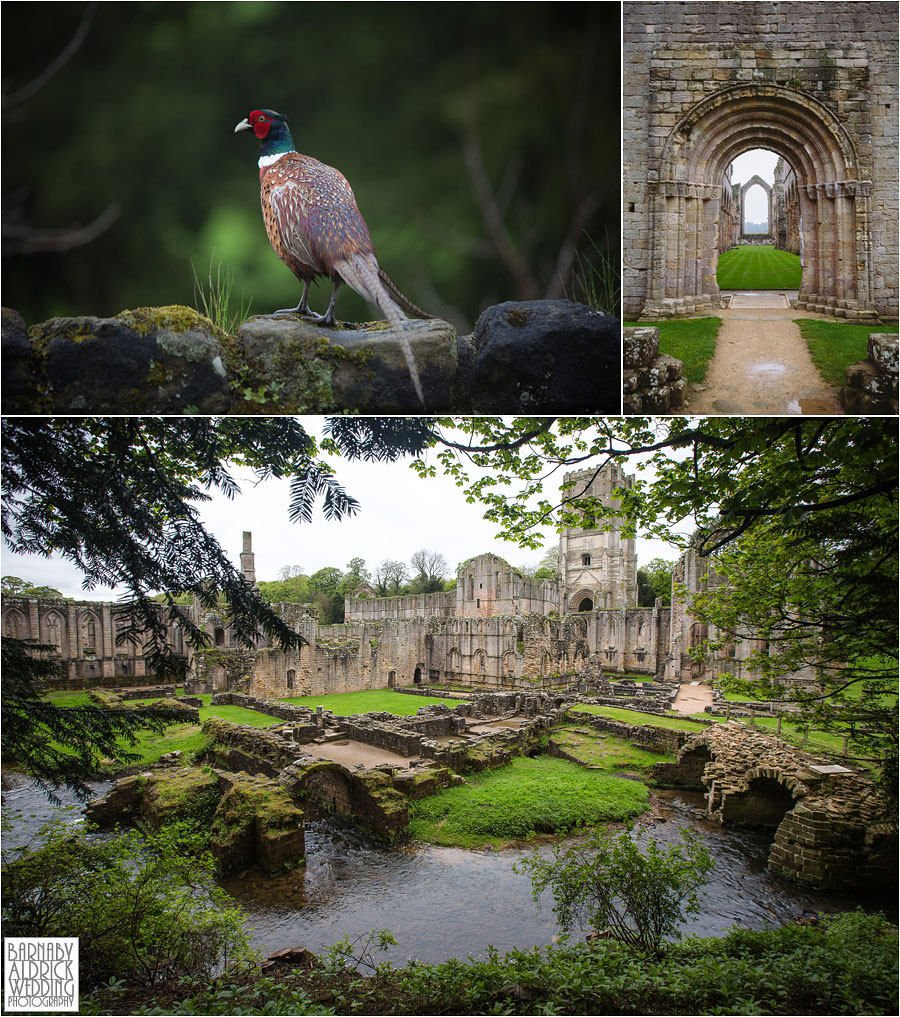 Fountains Abbey Ripon Wedding Photography 003