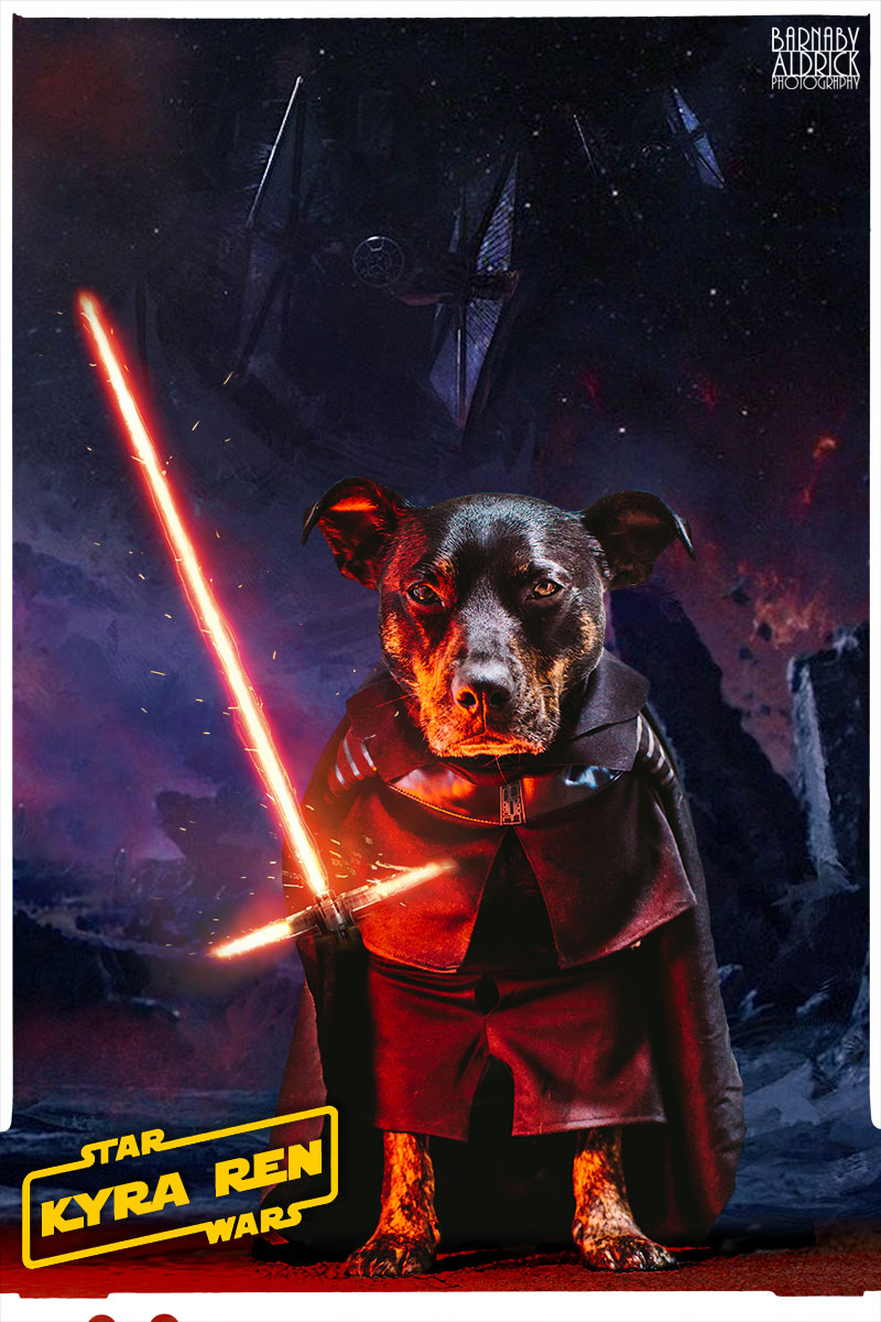 Star Wars Dog costume, Dog lightsaber costume, Star Wars Pet outfit, Kylo Ren Dog
