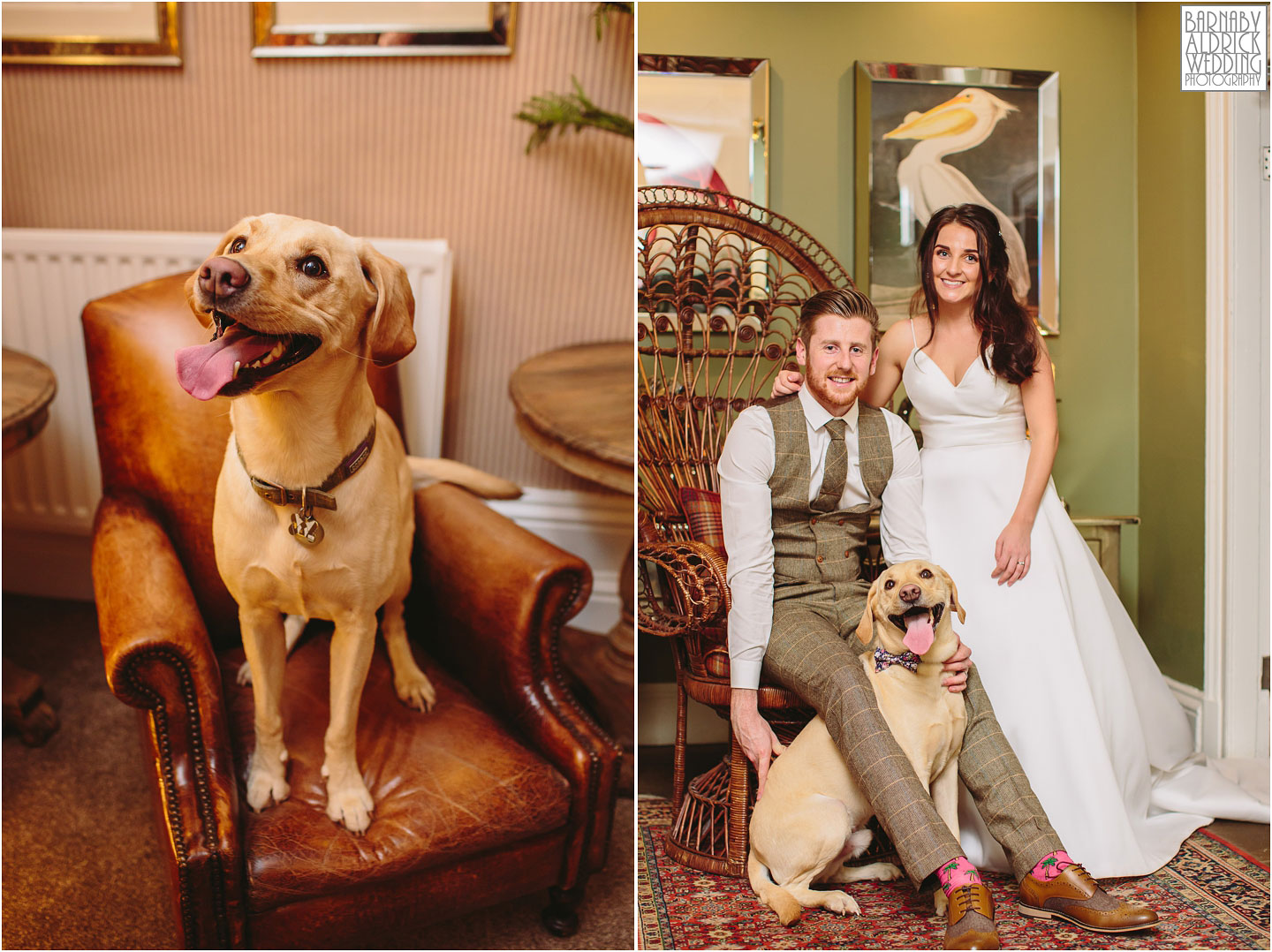 Dog Friendly Yorkshire Exclusive Bespoke Country House Wedding Venue