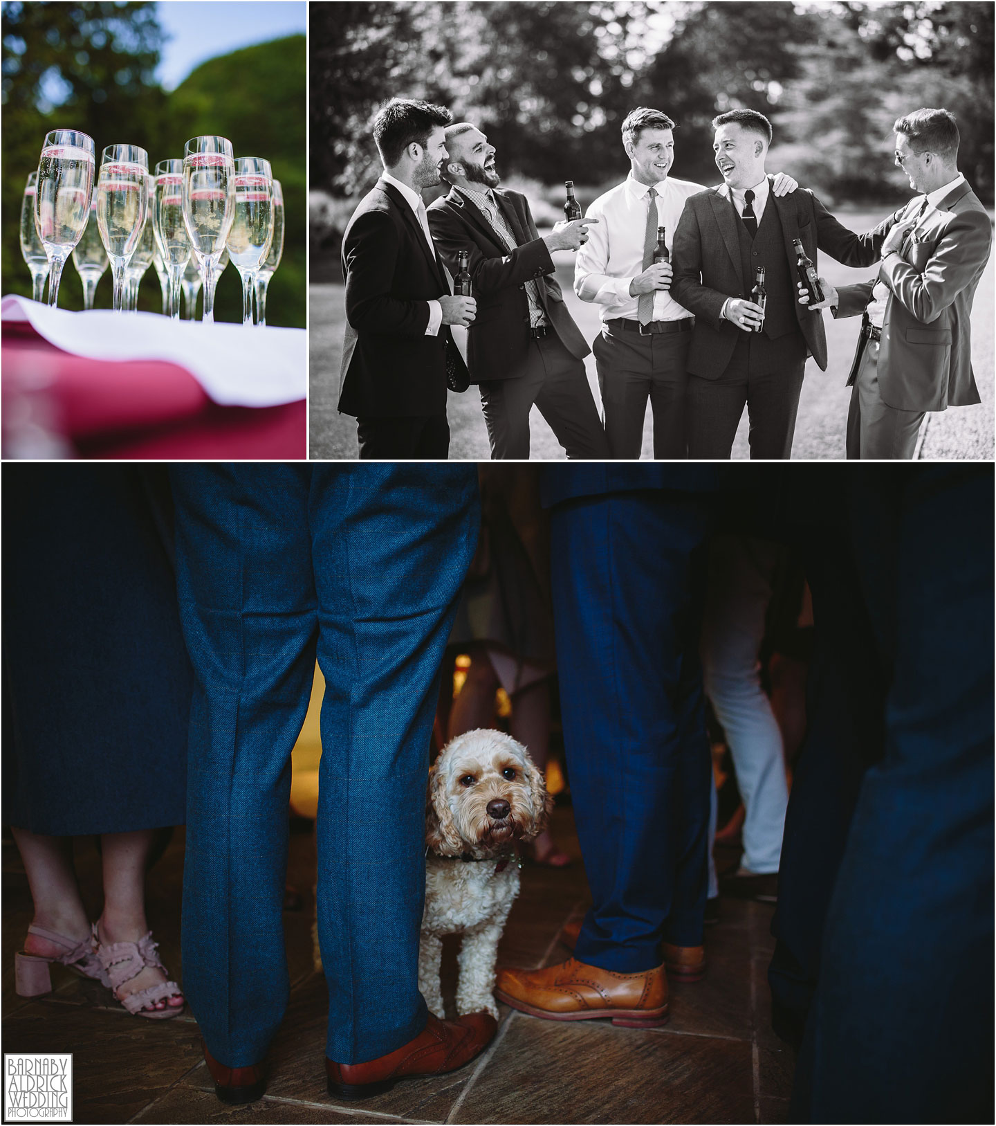 Dog guest wedding photo at Priory Cottages near Wetherby, Amazing Yorkshire Wedding Photos, Best Yorkshire Wedding Photos 2018