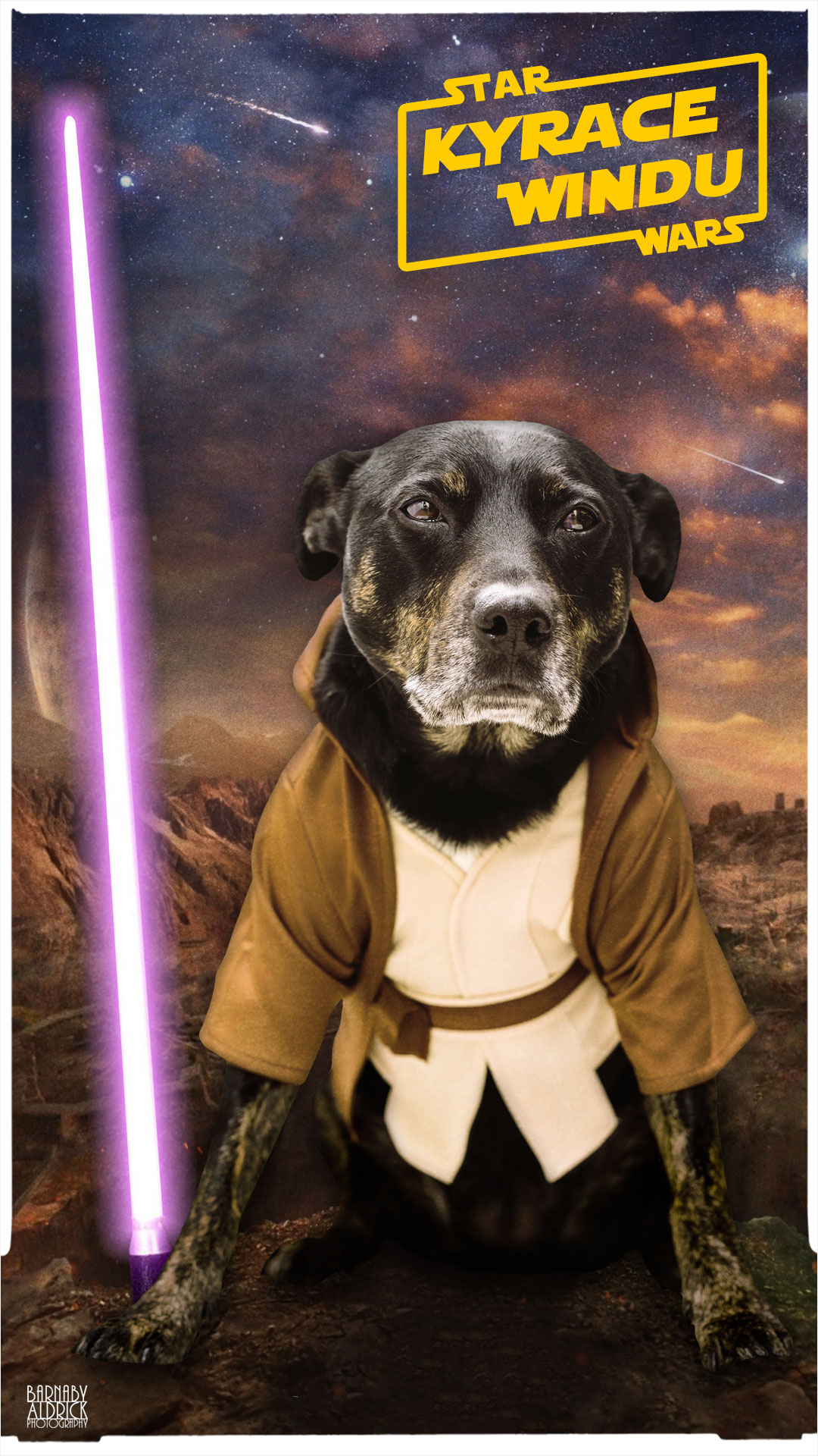 Star Wars Dog Fancy Dress, Pet Star Wars Costume, Mace Windu star wars dog costume