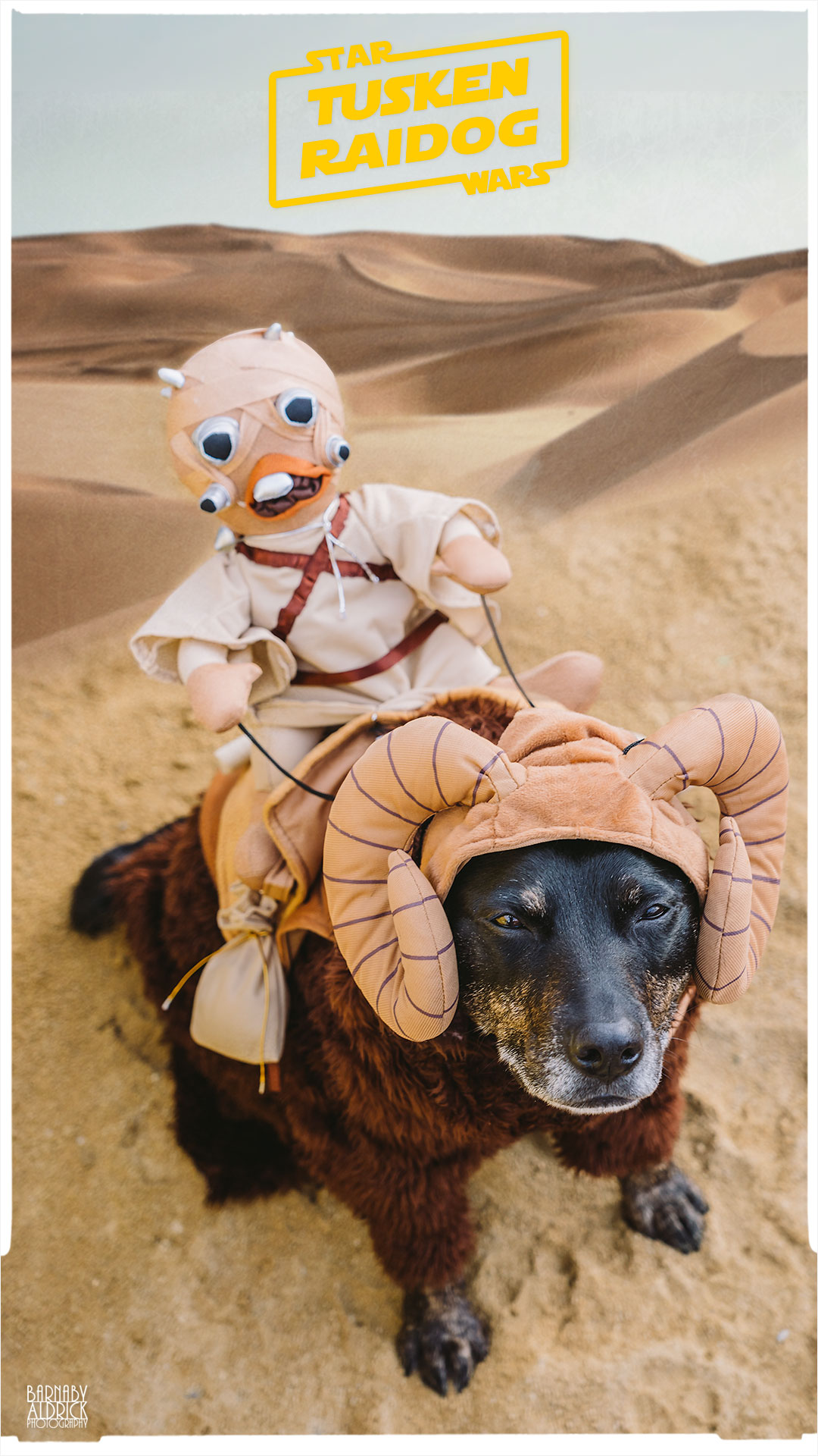 Star Wars Tusken Raider Dog Costume, Tusken Raider Dog Outfit, Star Wars Bantha Dog Costume