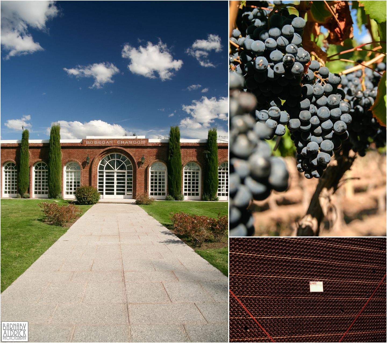 Mendoza wine travel chandon malbec