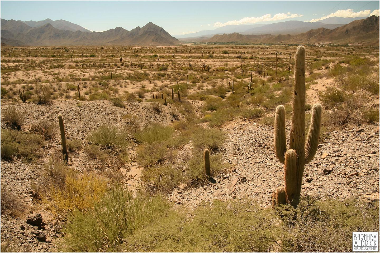 Puenta del inca National Park Argentina, Mendoza Landscape Argentina